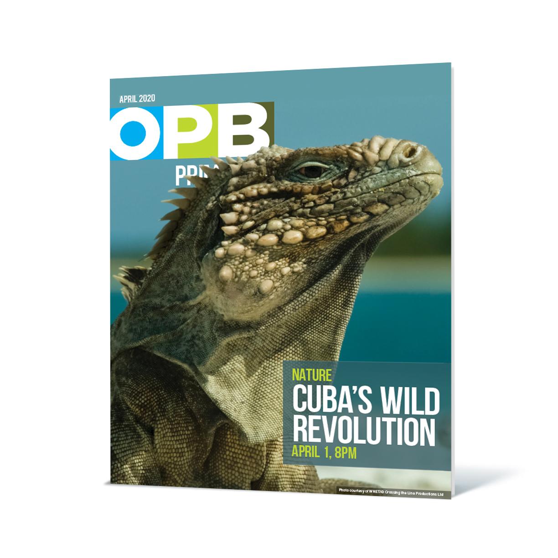 OPB member guide April 2020 3D